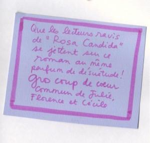 les_oiseaux-9de066